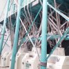 100t Wheat Flour Mill Machine Flour Mill Plant for Semolina Farina Maida