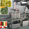 Hot Selling Food Fruit Vegetable Tomato Onion Dehydrator