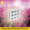 Hydroponic Systems 1800W COB LED Grow Lights