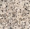Nice Color Big Flower Natural Granite Bala White