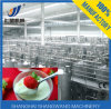 High Quality and Tasteful Yogurt Processing Line, Making Machine.