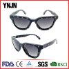 Good Quality Retro Denim Star Pattern Hinge Sunglasses for Men
