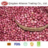Fresh Red Pearl Onion 35mm with Good Price