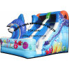 Small Cute Inflatable Slide for Rentals