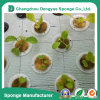 Organic Farm Save Water and Soil Pre-Cut Hydroponics Sponge Foam
