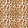 100%Polyester Light Leopard Print Pigment&Disperse Printed Fabric for Bedding Set