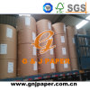 506mm 528mm Width White Coated Paper in Reel for Wholesale