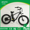 500W Mountain Electric Haibike Bike with Fat Tire Wheel