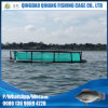 Long Service Life Round HDPE Net Cage for Fish Aquaculture
