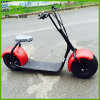 Citycoco E-Scooter 800W-1000W 60V Lithium Battery Electric Scooter