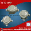 Explosion Proof Junction Box with Various Shapes and Specifications