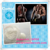99% Purity Antiestrogen Steroids Powder Clomifene Citrate/Clomid for Bodybuilding