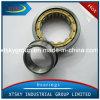 Xtsky Cylinder Roller Bearing (NJ206EM)