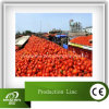 Complete Tomato Paste Processing Machinery Line