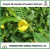 Factory Supply Cassia Nomame Powder Extract Water Soluble Flavanols 8% UV