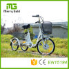 Adult E Tricycle Electric Trike with Lithium Battery 36V 250W 3 Wheels E Tricycle for The Elderly