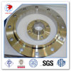 30 Inch Large Diameter Flanges