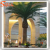 Hotel Decoration Fiberglass Artificial Date Palm Tree