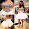 Tulle Homecoming Cocktail Dress Cystals Bodice Prom Party Gowns Evening Dress E1623