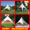 Fashion Style White Star Shaped Party Wedding Tent for Outdoor Event