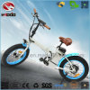 Foldable 350W Electric Bicycle Lithium Battery Fat Tire Folding Bike En15194 Apporved
