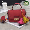 Tassel Fringe Trend Handbags with Fancy Lady Shoulder Bag with Removable Colorful Strap Sy8211