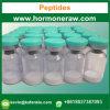 Raw Powder Wholesale 99% Assay Peptides Peg-Mgf 2 Mg/Vial