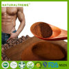 Gandoerma Lucidum Healthy Maca Man Care Coffee