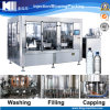 Low Capacity Small Scale Mineral Water Production Line