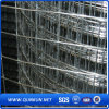 Reinforcement Welded Wire Mesh From China