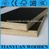 Black Phenolic Film Faced Plywood Shuttering Plywood Water Proof Plywood