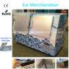Ice Freezer Storage with Double Doors