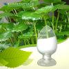 Natural Centella Extract Powder Madecassoside