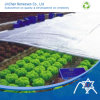 Vegetable Covering, Ideal for Agriculture Cover (JinChen 06-101)