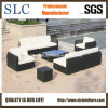 Rattan Sofa Set/Sofa Set Designs 2013/ Sofa Set Outdoor (SC-B6018-B)