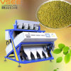 Automatic RGB CCD Color Sorter, Green Beans