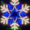 Holiday Lighting Decoration Light for Sale