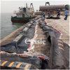 Oil Booms/Rubber Cable Coupling/Rubber Deceleration Strip