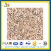 Chinese Granite Zhangpu Rust Granite Slabs for Flooring Outdoor (YQG-GS1013)