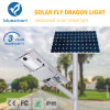 Bluesmart 100W IP65 Solar LED Street Lightings with Remote Control