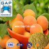Manufacturers Supply Apricot Juice Powder