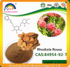 Rhodiola Rosea Extract with Salidroside 5%