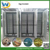 Factory Selling Automatic Poultry Chicken Duck Quail Goose Egg Incubator