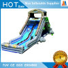 Cool Design Garden Toy Inflatable Slide with Swimming Pool