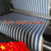 Roll Coating Flexo Printing Machine (Non woven Type)