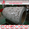 China Color Coated Prepainted Galvanized Steel Coil