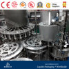Complete Bottled Peanut /Soybean Milk Filling Plant