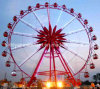 Outdoor Playground Sky Wheel for Famlily Amusement Park Rides