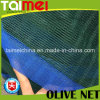 Green Tight Edge Triangle Olive Collect Net for Tunisia/Greece