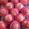 Professional Supplier of Chinese Fresh Qinguan Apple